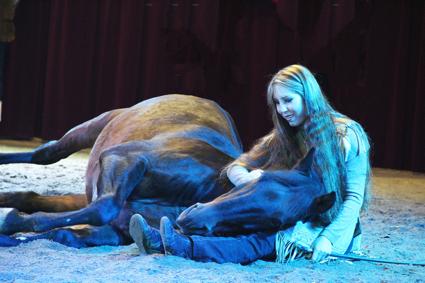 hest fyr søren betydning