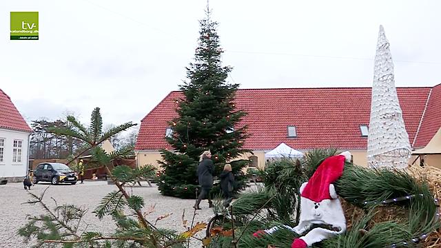 Dyrehøj Vingård er klar til det helt store julemarked i den kommende weekend. Foto: Jens Nielsen