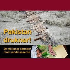 Pakistan drukner