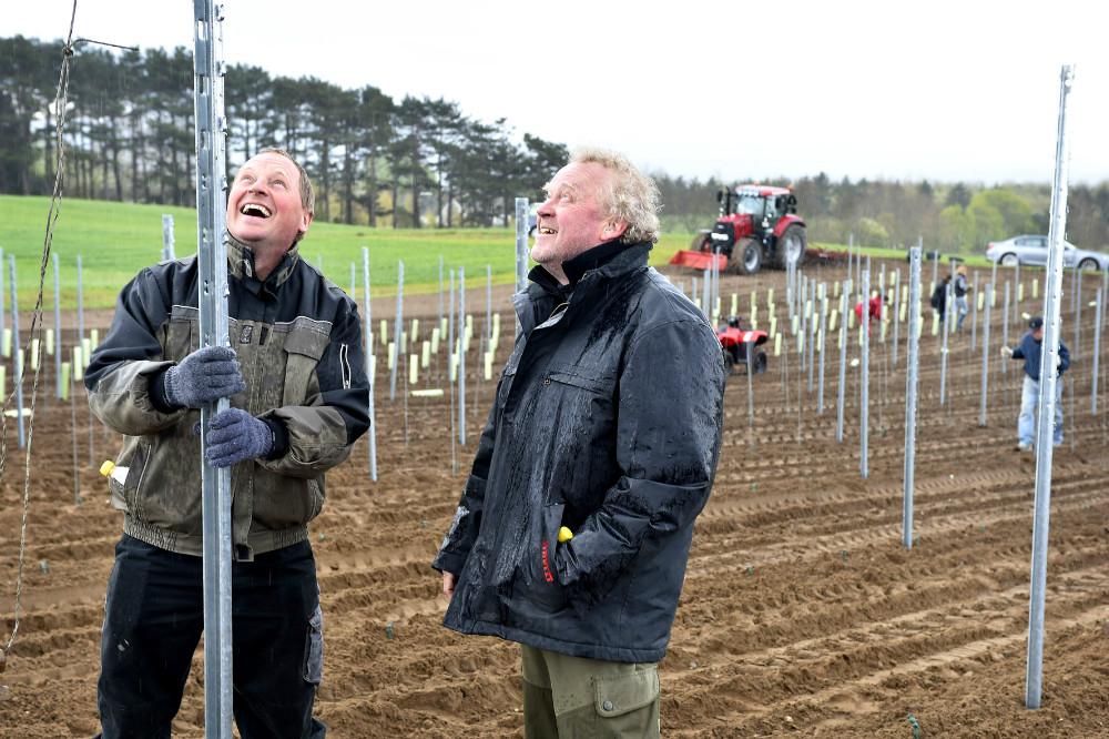 Tom Christensen fra Dyrehøj Vingård sammen med Povl Barfod. Foto Jens Nielsen
