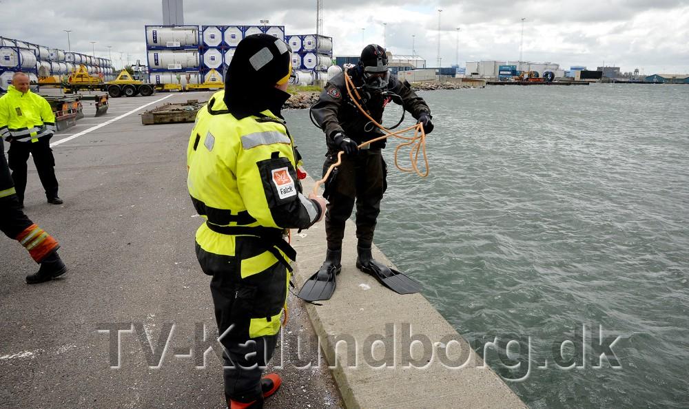 En dykker fandt frem til en bil på bunden af Kalundborg Havn. Foto: Jens Nielsen