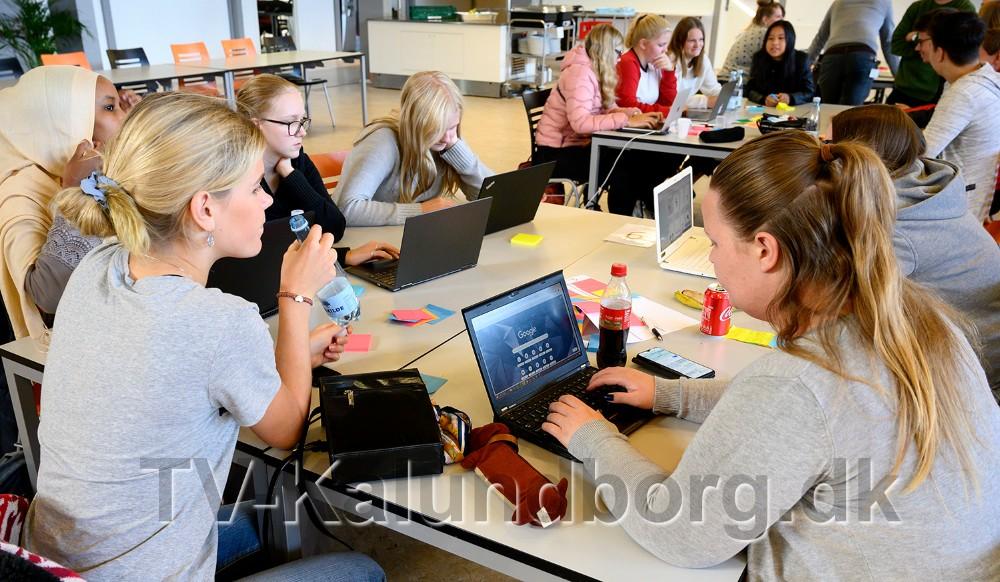 Eleverne på Allikelund Gymnasium har taget opgaven meget seriøst. Foto: Jens Nielsen