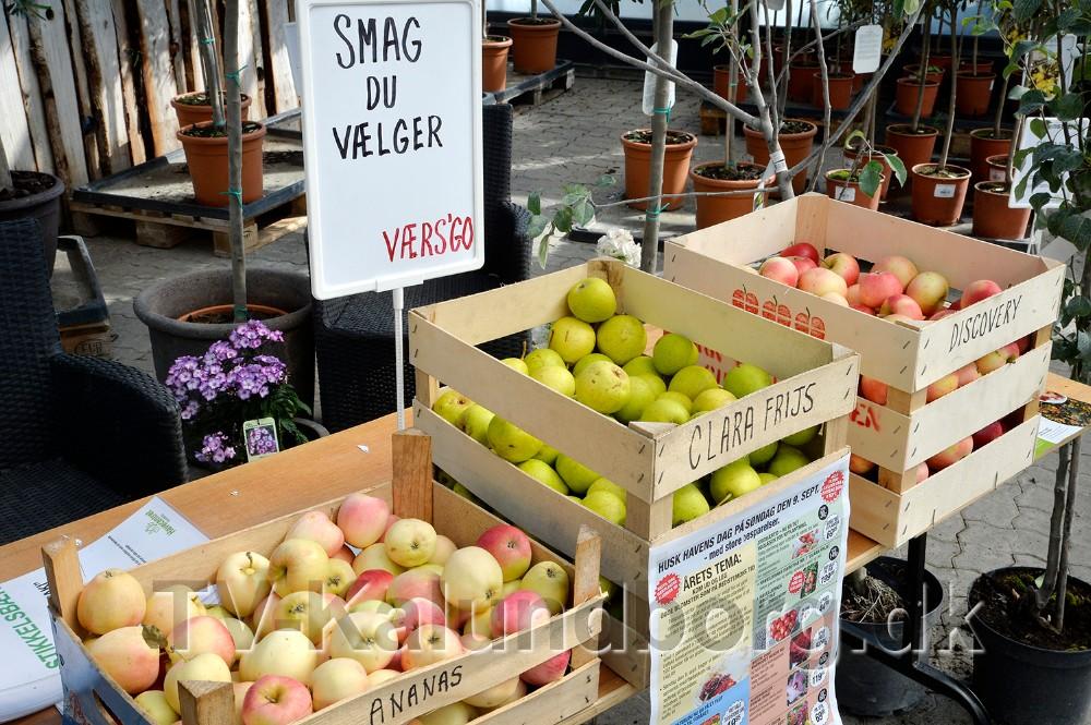 Kunderne kan bl.a smage æbler og pære. Foto: Jens Nielsen