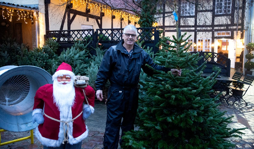 Ole Larsen klar med flotte juletræer i gåden til Ole Lunds Gård. Foto: Jens Nielsen