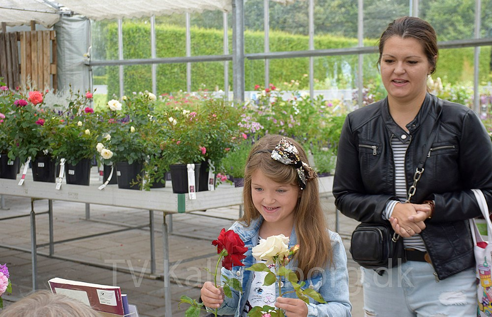 I dag blev Rosens Dag fejret i Vejs Havecenter i Høng. Foto: Gitte Korsgaard.