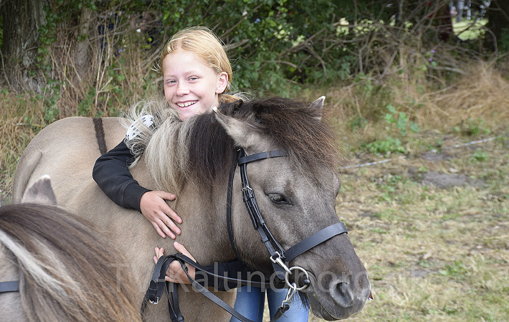 Der var stor begejstring for alle hestene til Gørlev Hesteskue og Kræmmermarked søndag. Foto: Gitte Korsgaard.