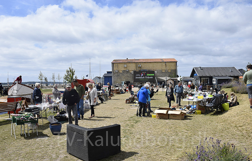 Søndag var der loppemarked i Kalundborg Havnepark. Foto: Gitte Korsgaard.