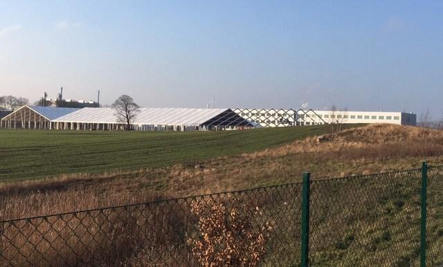 Det store telt dannede rammen for et seminar og en fest for medarbejderne. Foto: Novo Nordisk