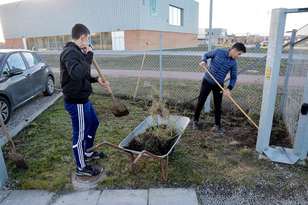 De unge fra ´Y-Camp´ ordner de grønne områder hos Intertek Caleb Brett på Dokhavnsvej. Foto: Jens Nielsen