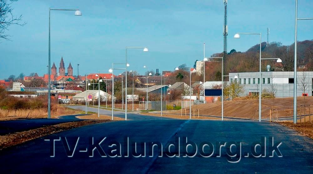 Den nye vej forbiStation Biotekbyen Kalundborg øst, kommer til at hedde Rynkevangen. Foto: Jens Nielsen