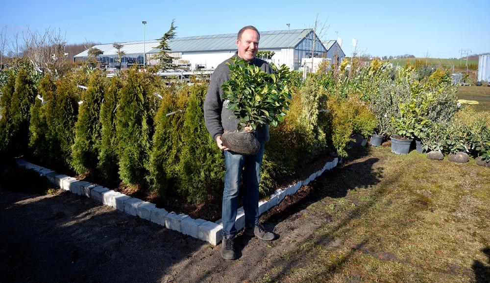 Rasmus Jensen i planteskole afdelingen, hvor de mange planter er blevet mere overskuelige. Foto: Jens Nielsen
