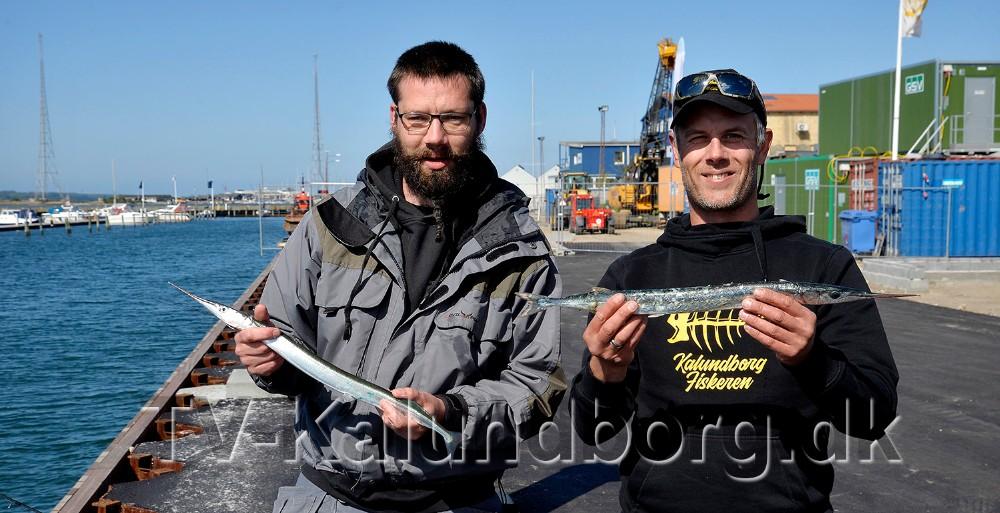 Per og Per, henholdsvis Binger og Jensen, fik hornfiskene til at bide på i havneparken. Foto: Jens Nielsen