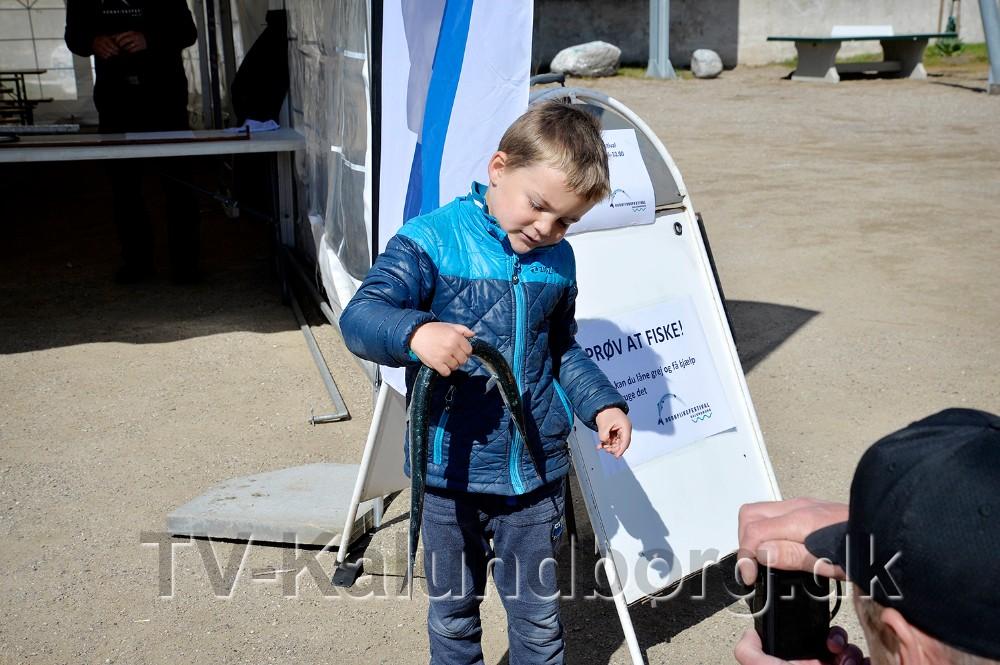 5-årige Vincent viste stolt en hornfisk frem, som mor havde fanget. Foto: Jens Nielsen