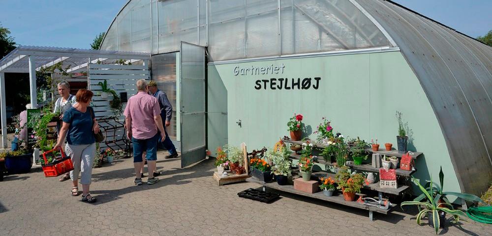 Gartneriet på Stejlhøjhus har masser af blomster, planter og krydderurter, som sælges til markedsdagen. Arkivfoto: Jens Nielsen