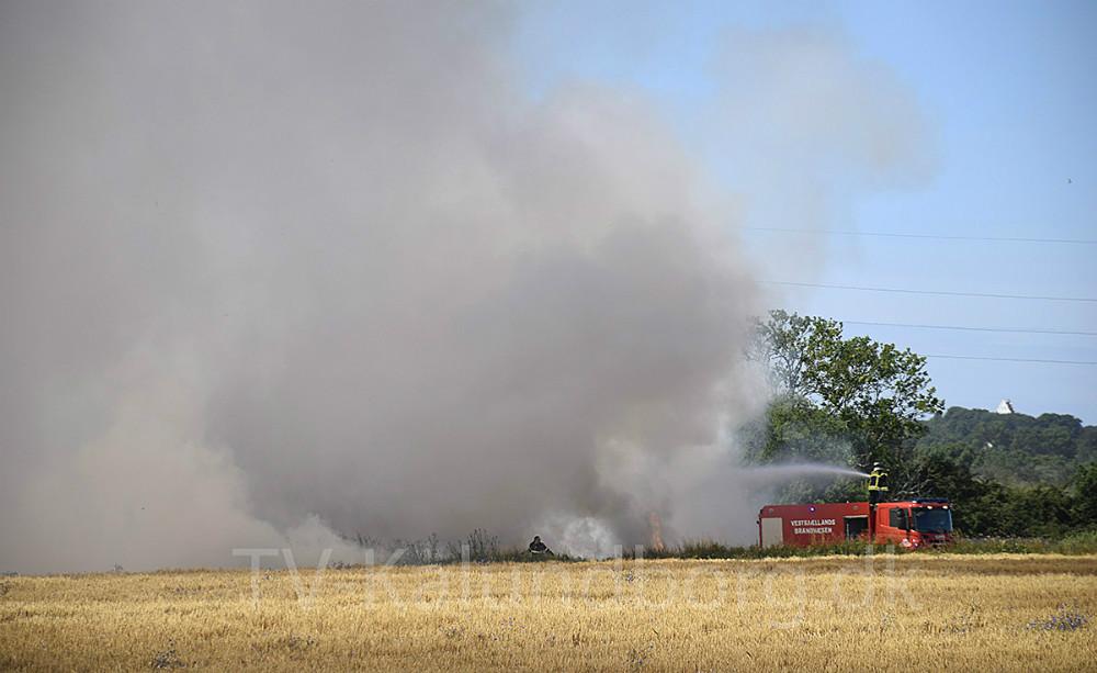 Brand på mark i går var formentlig forårsaget af gnist fra landbrugsredskab. Foto: Gitte Korsgaard.