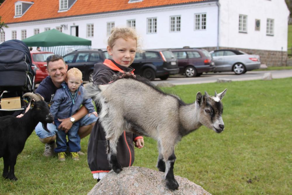 Der bliver kælet med søde dyr på Naturens Dag på Røsnæs. Foto: Gitte Korsgaard.