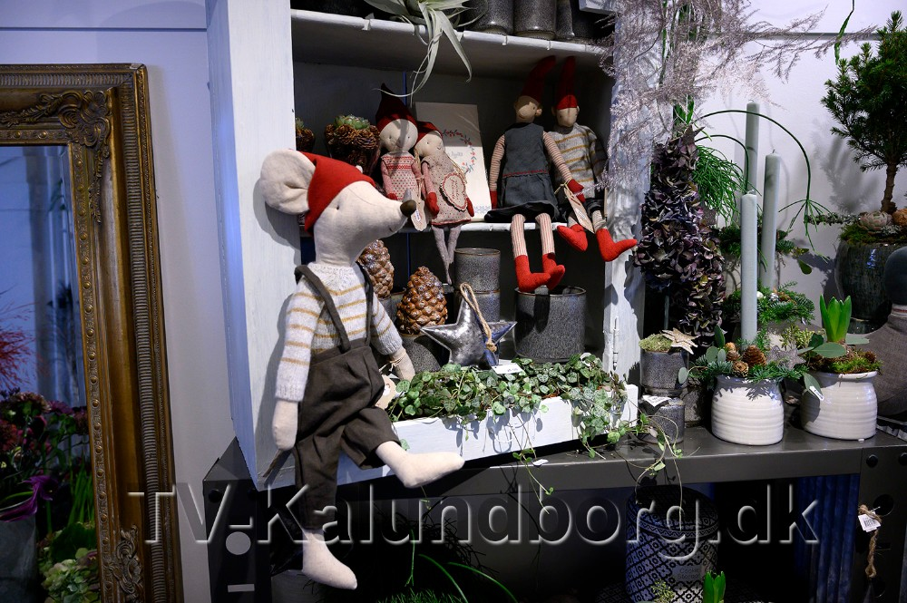Nisser og andre dukker fra Maileg er meget populære hos Den Lille Blomsterbutik. Foto: Jens Nielsen