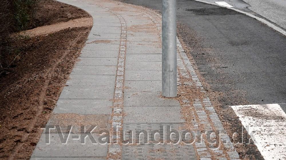 Endnu engang er der placeret en lygtepæl midt i fortorvet, men denne gang er der mening med galskabet, oplyser Kalundborg Kommune. Foto: Jens Nielsen