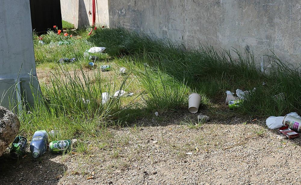 Efter pinsevar Kalundborg Havnepark i meget dårlig stand. Unge mennesker havde øget hærværk på parkens toiletter, og der lå skrald og glasskår i hele parken.