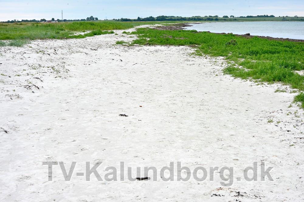 Under tangen er der den fineste sandstrand. Foto: Jens Nielsen
