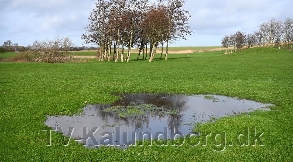 Flere steder står der vand på golfbanen på Røsnæs. Foto: Jens Nielsen