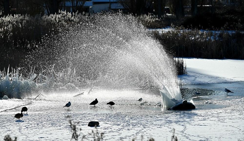 Søen ved Novo fritidscenter. Foto: Jens Nielsen
