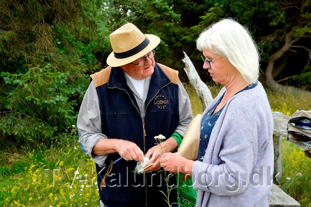 Jette Damlund fortæller om planterne. Foto: Jens Nielsen