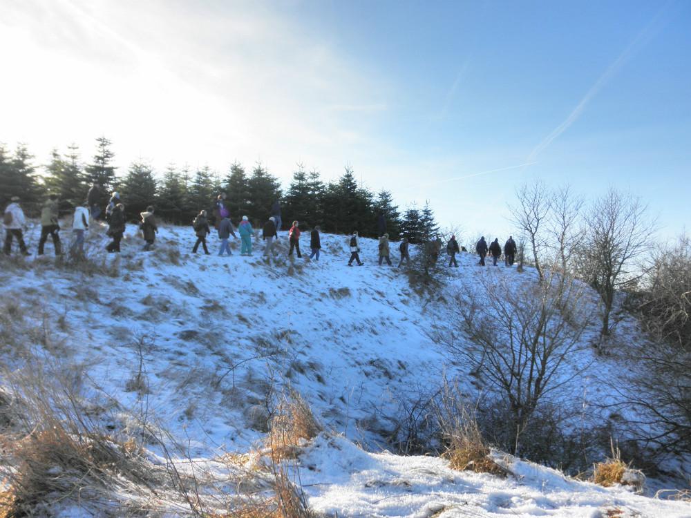 Søndag den 27. januar er der igen vandretur i Bjergsted Bakker. Foto fra tur i Bjersted Bakker i 2018.