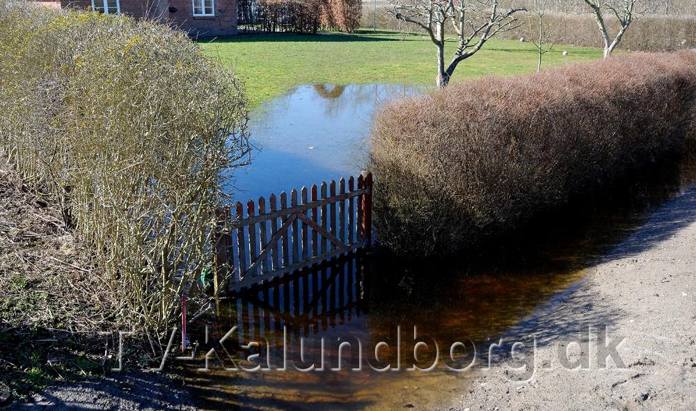 Flere steder står vandet helt ind i haverne på Bymarken. Foto: Jens Nielsen