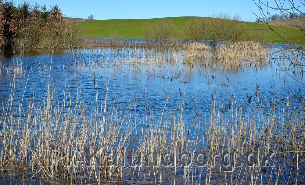 Et stort område for enden af Bymarken i Jerslev er oversvømmet. Foto: Jens Nielsen