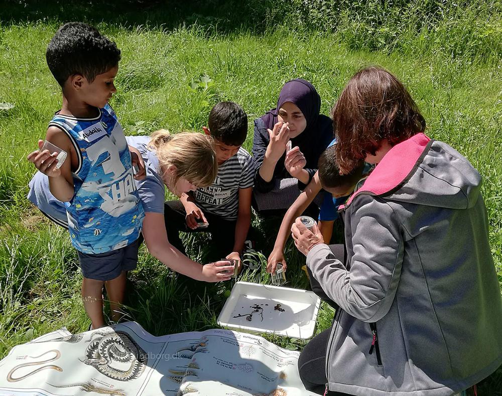 Kalundborg Naturklub er et nyt projekt under Red Barnet Kalundborg, som har til formål at skabe et naturfælleskab for børn mellem 6 og 12 år. Privatfoto.