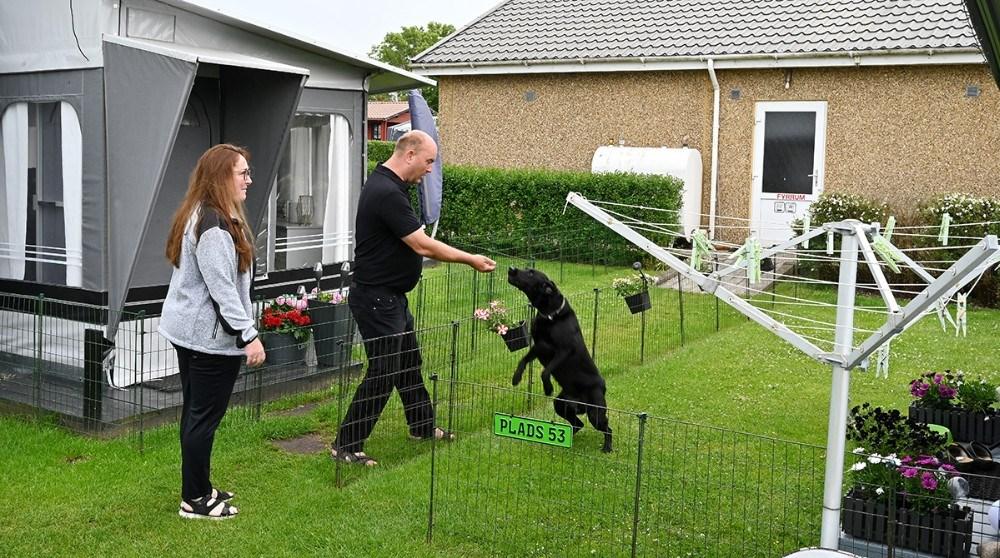Hundene ved godt at værtsparret har hundekiks i lommen. Foto: Jens Nielsen