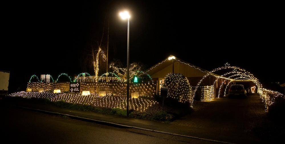 Brian Jørgensen har i år hele 25.000 pærer i sin juleudsmykning. Foto: Jens Nielsen