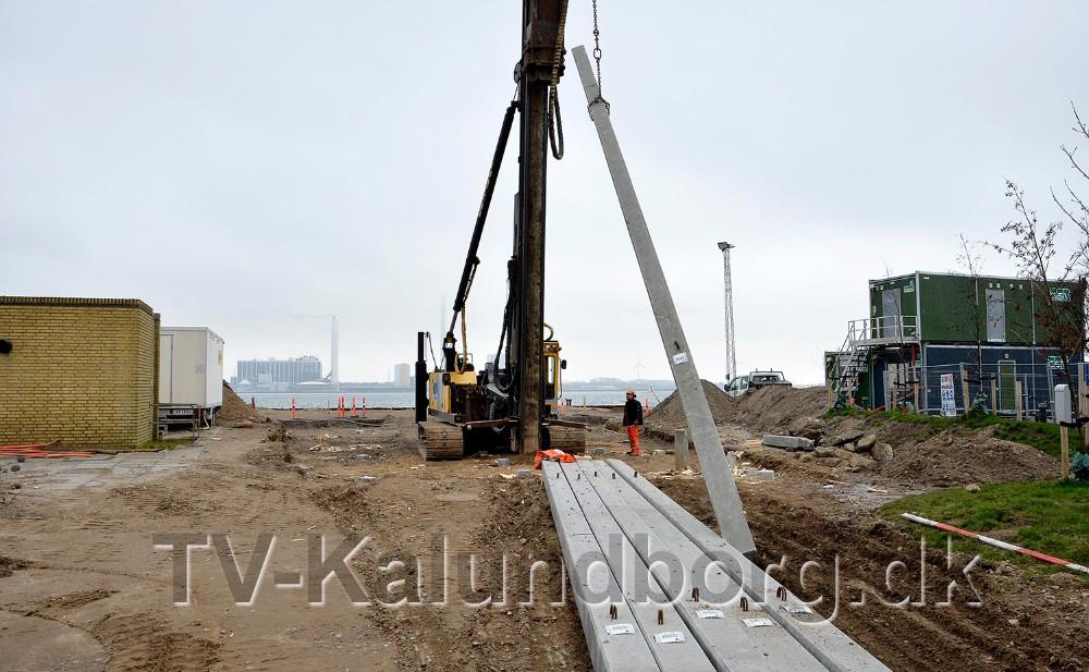 I denne uge er der rammet pæle ned i undergrunden til et nyt fælleshus og café i havneparken. Foto: Jens Nielsen
