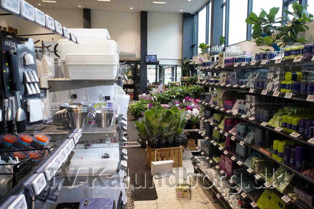 Lys og servietter er flyttet ud i blomsterafdelingen. Foto: Jens Nielsen