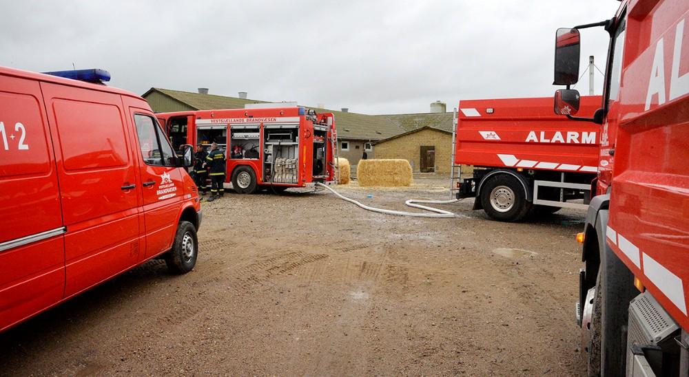 Vestsjællands Brandvæsen fik hurtigt styr på branden, men flere grise er gået til. Foto: Jens Nielsen