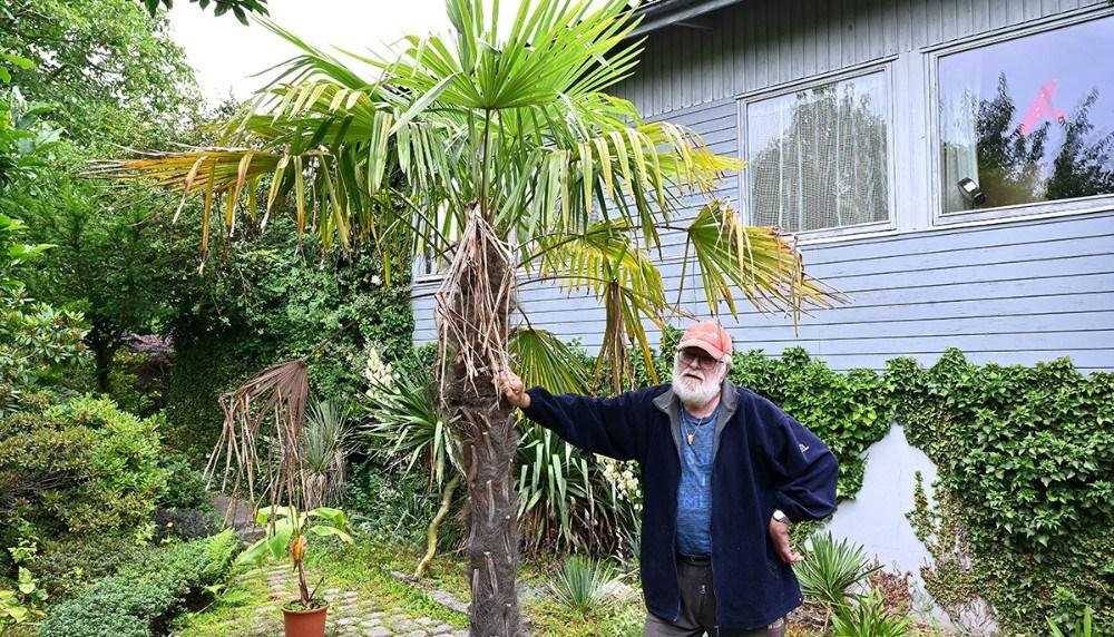Mogens Madsen ved en af haves palmer. Foto: Jens Nielsen