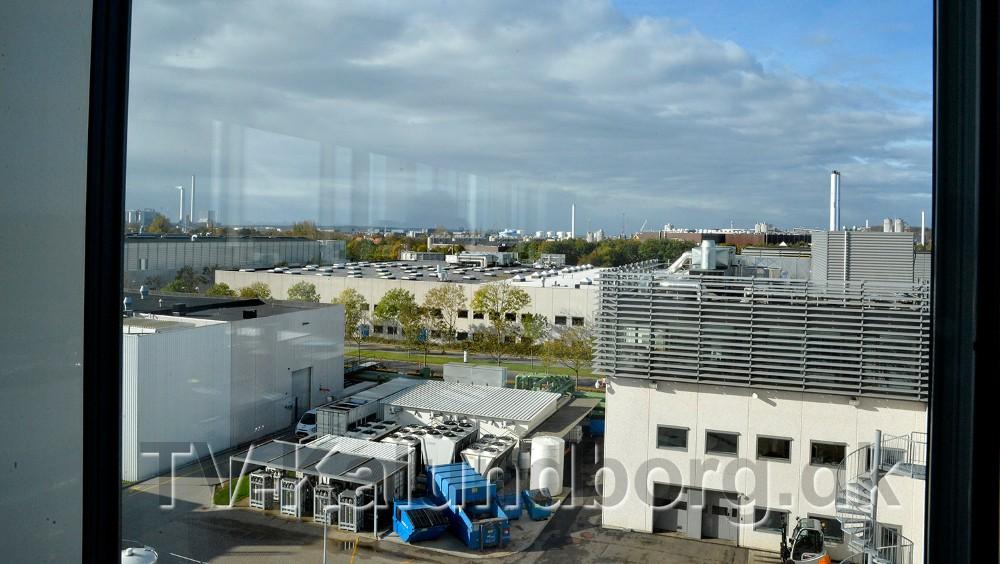 Der er en flot udsigt fra kontorerne. Foto: Jens Nielsen