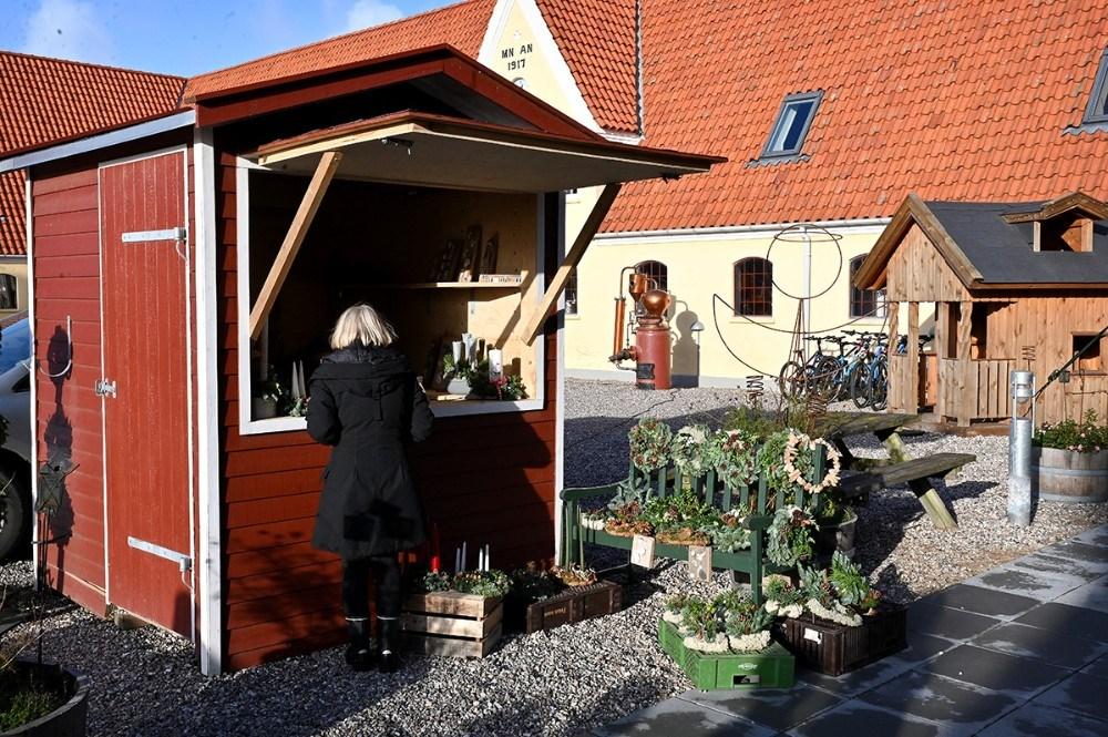 Boder på gårdspladsen. Foto: Jens Nielsen