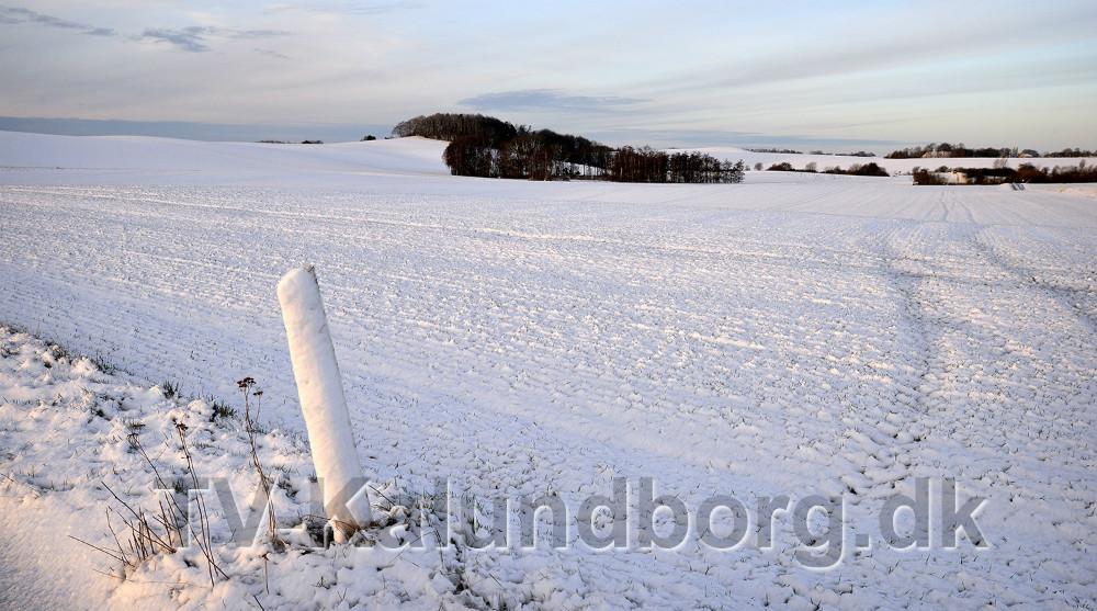 Området omkring Svebølle. Foto: Jens Nielsen