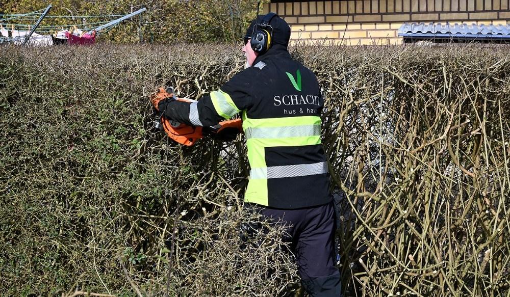 Da TV-Kalundborg møder Thomas Schacht er han igang med at klippe af en hæk så den ikke er så bred. Foto: Jens Nielsen