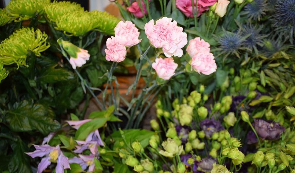 Smukke blomster i alle afskygninger hos Den Lille Blomsterbutik på Sct. Jørgensbjerg i Kalundborg. Foto: Gitte Korsgaard.