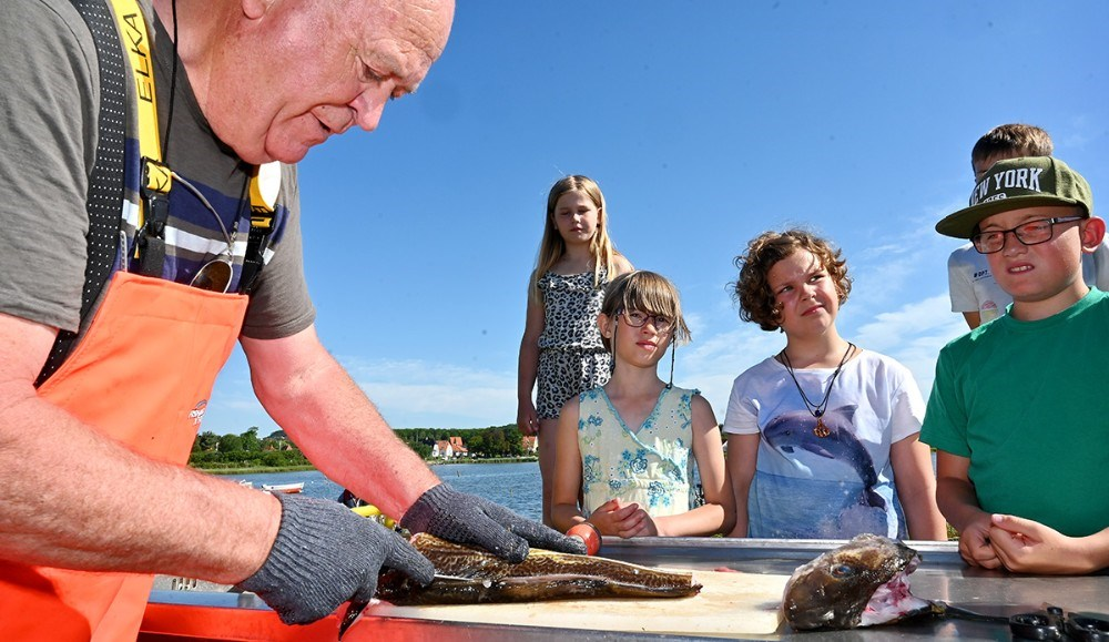 Willy Stig Andersen forklarede om torsken og svarede på spørgsmål fra eleverne. Foto: Jens Nielsen