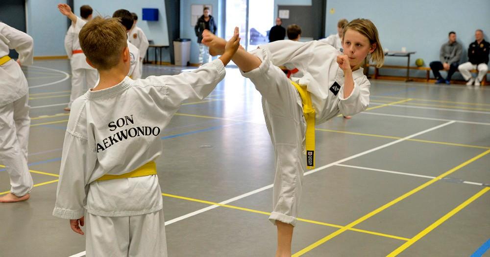 Oplev SonTaekwondo i Rynkevanghallen nu på tirsdag. Foto: Jens Nielsen