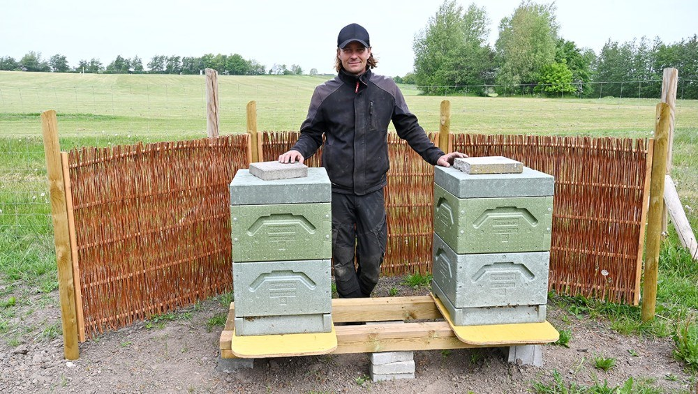 Jesper Bentsen har bl.a. en stor passion for biavl, og har indrettet en bigård på golfbanen. Foto: Jens Nielsen