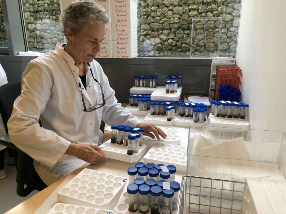 Siden forsøget i september 2018 har over 70 laboranter og forskere på Novozymes deltaget i analyser af prøverne.