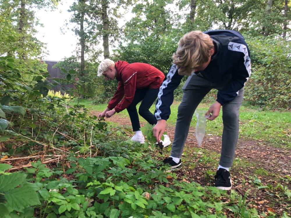 Skolen på Herredsåsen i Kalundborg har fundet hele to nye bakteriearter.