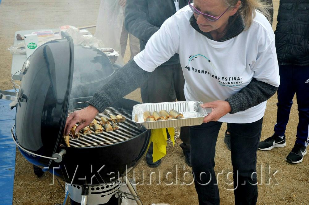 Lørdag den 11.-12. maj er der igenHornfiskefestival i Kalundborg. Arkivfoto: Jens Nielsen.